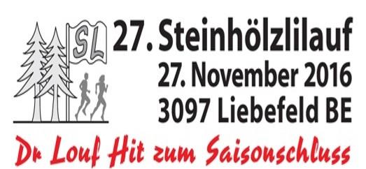 titelbild-steinhoelzlilauf-2016